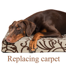 replacing-carpet